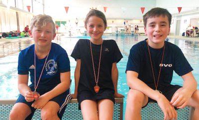Vier Medaillen für die Gelnhäuser Wasserspringer